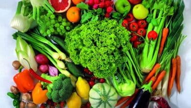 Photo de 4 choses à savoir avant de lancer son entreprise de nutrition en ligne