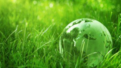 Photo de Eco Acteurs : communiquez !
