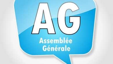 Pourquoi parle-t-on d'AG ordinaire et extraordinaire ?