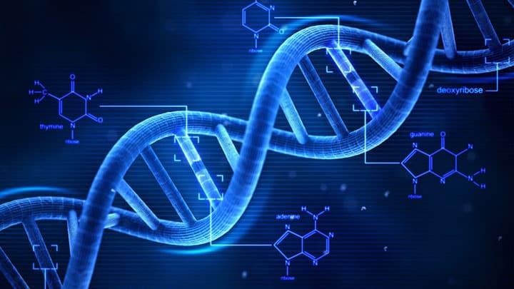L'optimisme dans l'ADN des start upper
