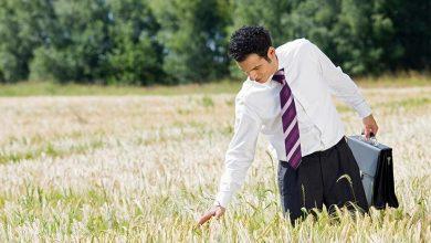 Photo of L'agriculture, un nouveau secteur d'innovation