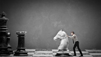Comment réussir dans le monde du cheval ?
