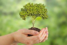 Photo of Diminuer son empreinte écologique : comment faire ?