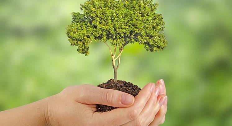 Diminuer son empreinte écologique : comment faire ?