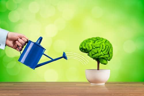 Les astuces pour améliorer sa mémoire