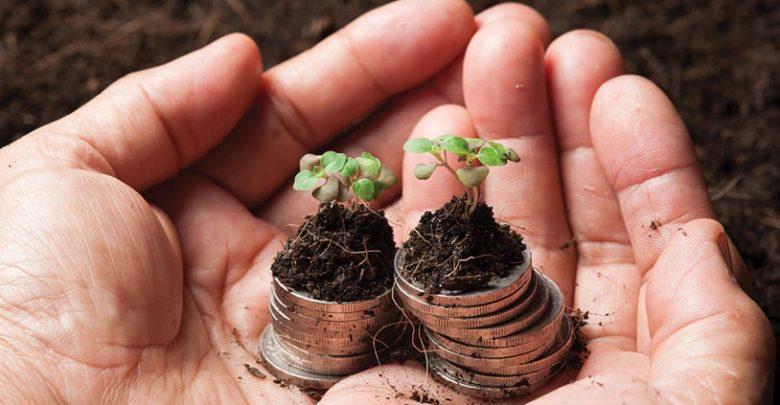 Ces entreprises qui ont fait du développement durable un atout