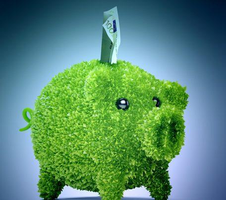 Green business : se faire financer par les fonds corporate