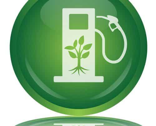 Intermarché va produire du biocarburant