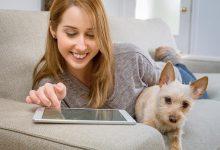 Photo de Le top des applications et plateformes dédiées aux animaux de compagnie