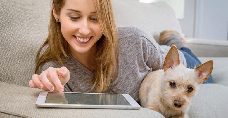 Le top des applications et plateformes dédiées aux animaux de compagnie