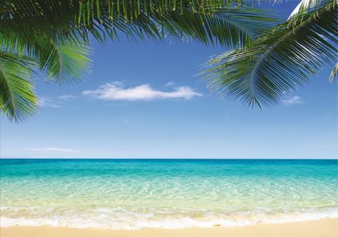 Dis-moi où tu passes tes vacances