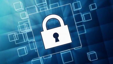 La protection de la marque sur Internet