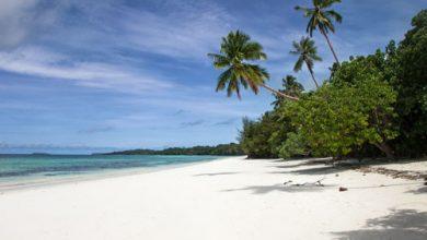 Photo of Même sur une île déserte, auriez-vous le désir d'entreprendre ?