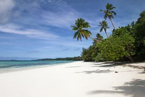 Même sur une île déserte