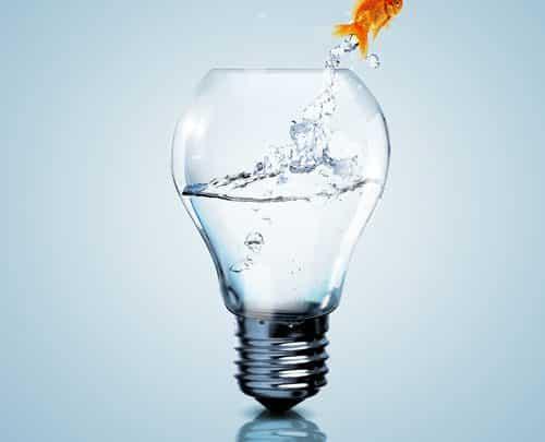 20 idées de micro-entreprises !