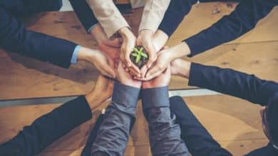 Photo of Entreprise : comment réduire votre impact écologique