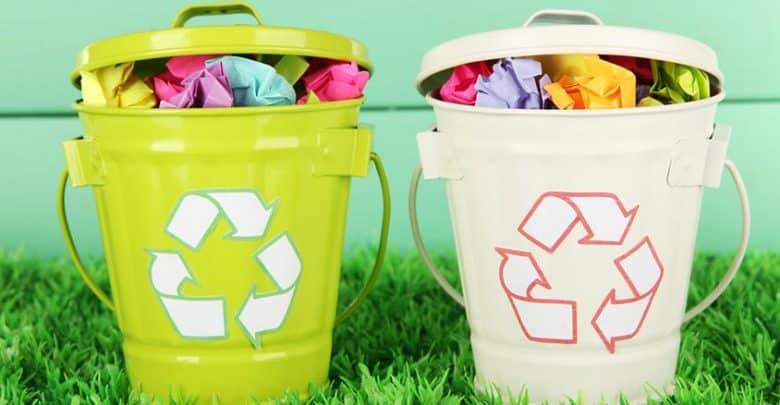 écologie et bien-être au bureau