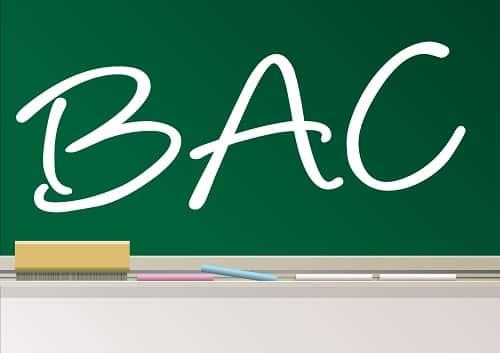 Pour une option « création d'entreprise » au BAC !
