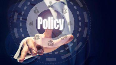 L'entrepreneuriat et la politique peuvent-ils se comprendre ?