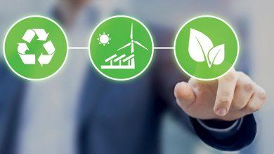 Ces start-up vertes qui préservent l'environnement