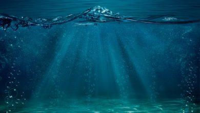 La stratégie de l'océan bleu