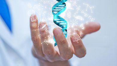 Le business de l'ADN