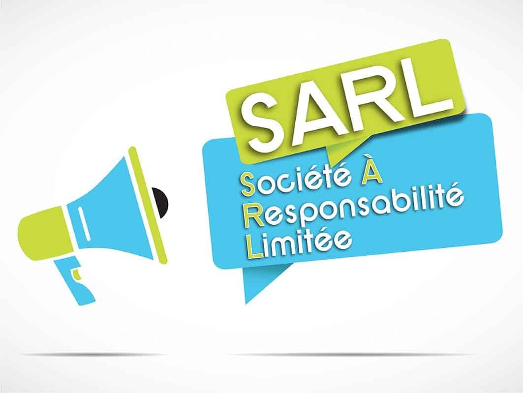 Statut du gérant de SARL  2017